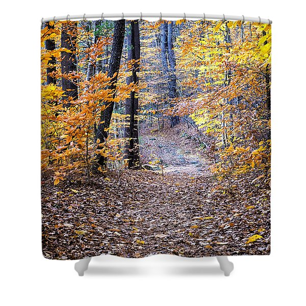 Shower Curtain featuring the photograph New Hampshire Woods by Tom Singleton