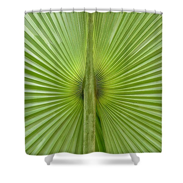 New Perspective Shower Curtain