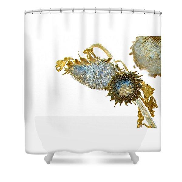 Night Flowers Shower Curtain