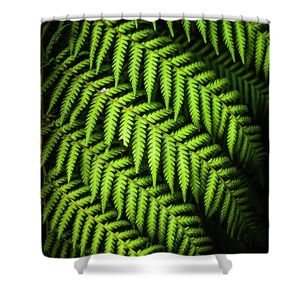 Night Forest Frond Shower Curtain