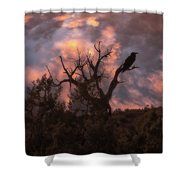 Night Of The Raven Shower Curtain