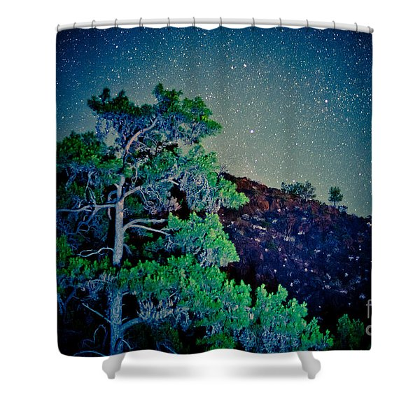 Night Sky Scene With Pine And Stars Artmif.lv Shower Curtain