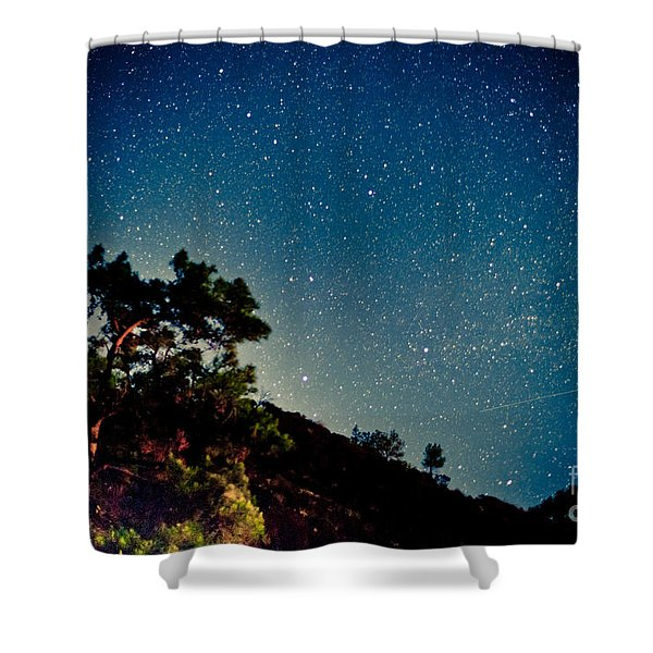 Night Sky Scene With Pine And Stars Shower Curtain