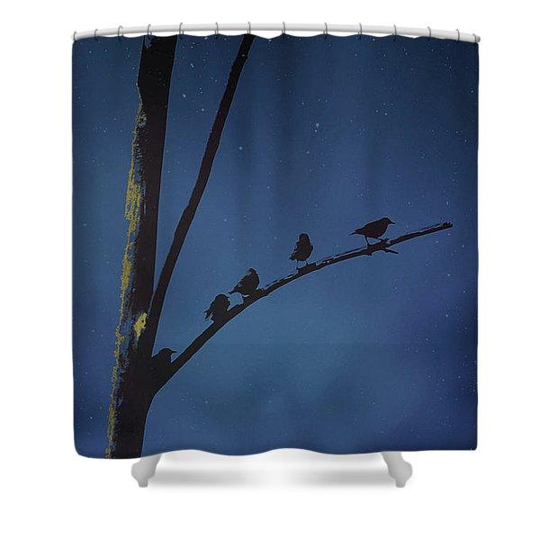 Nightfall  Shower Curtain