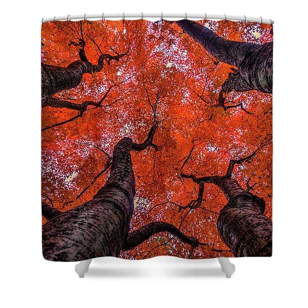 Nishinomiya Japanese Garden - Autumn Trees Shower Curtain