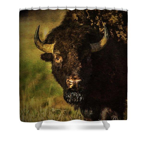 North American Buffalo Shower Curtain