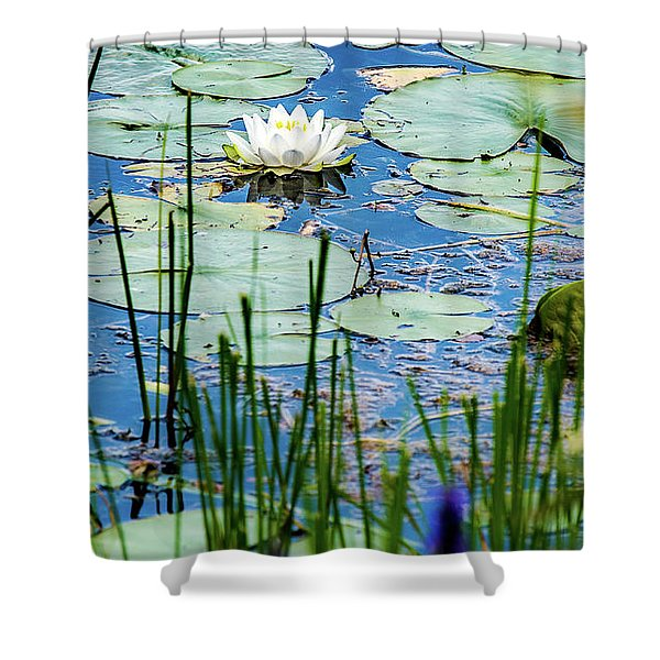 North American White Water Lily Shower Curtain