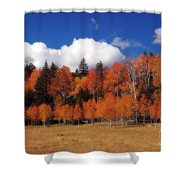 North Rim Autumn Shower Curtain