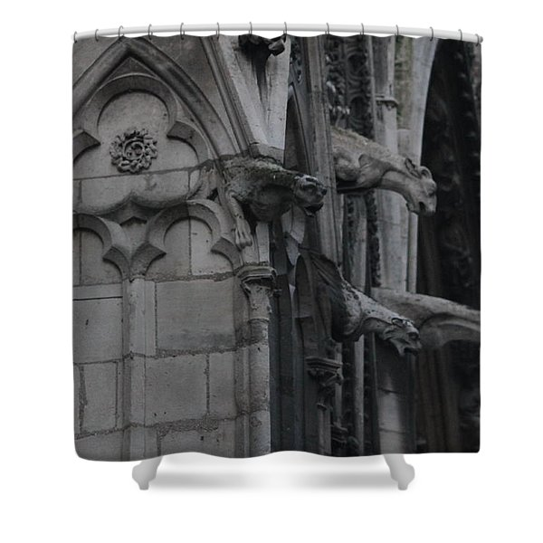 North Side Notre Dame Cathedral Shower Curtain