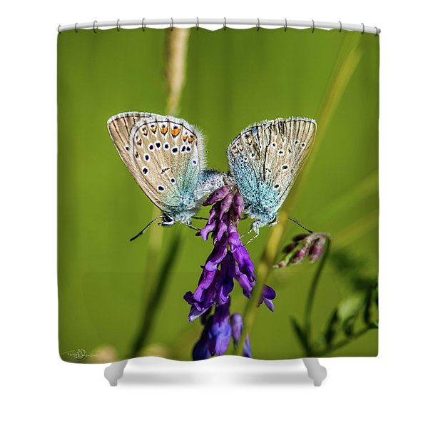 Northern Blue's Mating Shower Curtain