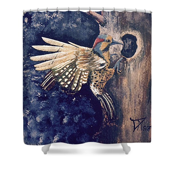 Northern Filicker Shower Curtain