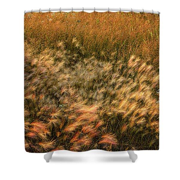 Northern Summer Shower Curtain