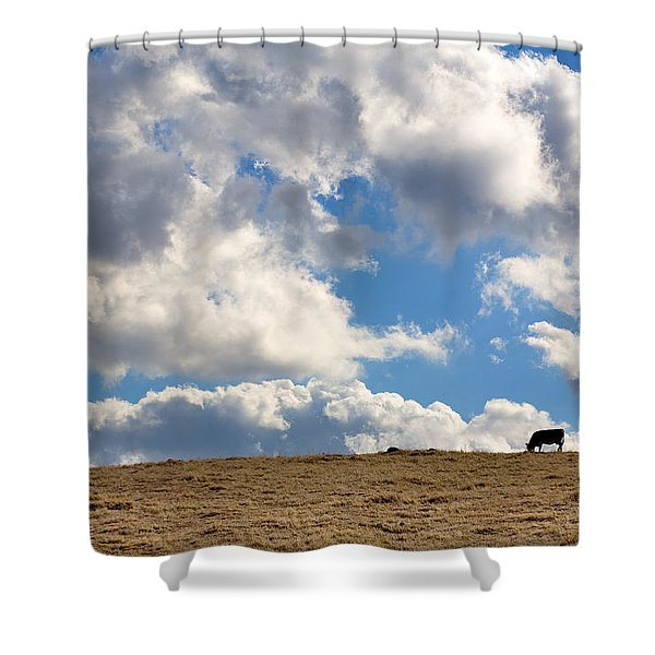 Not A Cow In The Sky Shower Curtain