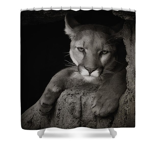 Not A Happy Cat Shower Curtain