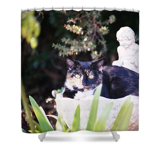 Shower Curtain featuring the photograph Not Just For The Birds by Cynthia Marcopulos