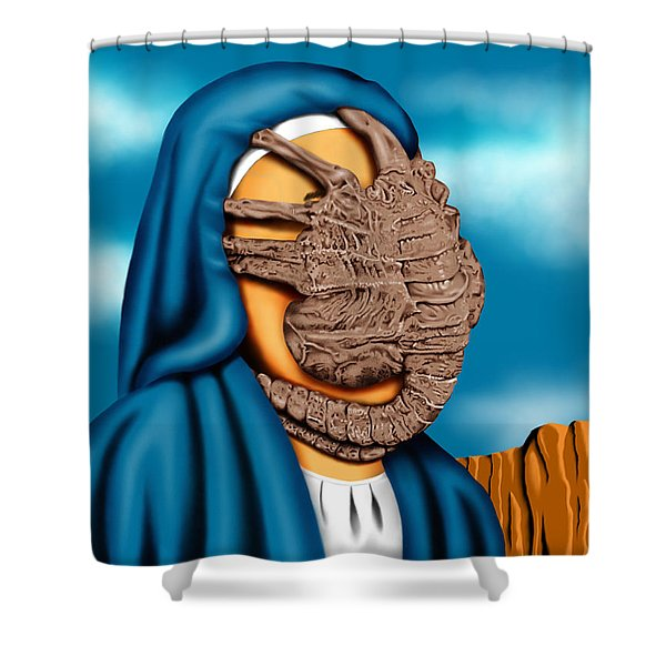 Not So Immaculate Conception Shower Curtain