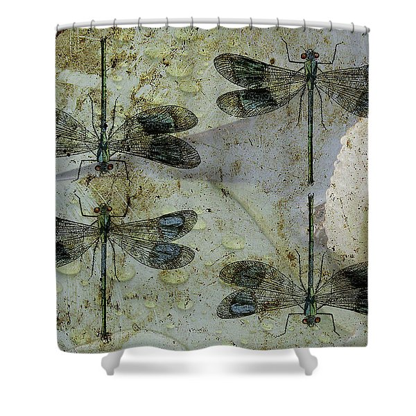 Nothing But A Rumor II Shower Curtain
