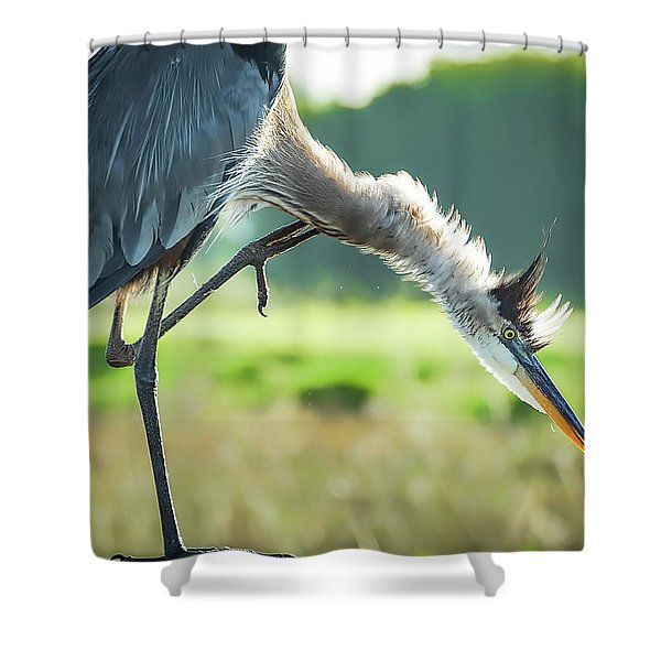 Nothing Like A Good Scratch Shower Curtain