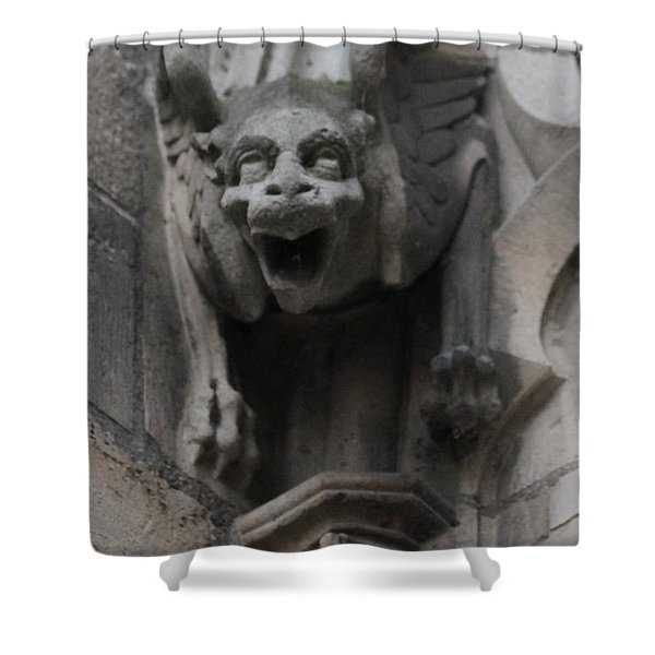 Notre Dame 1 Shower Curtain