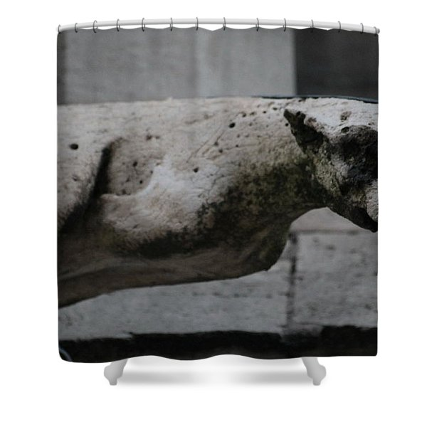 Notre Dame Bat Gargoyle Shower Curtain