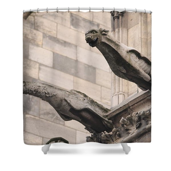 Notre Dame Cathedral Gargoyles Shower Curtain