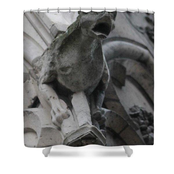 Notre Dame Gargoyle Grotesque Shower Curtain