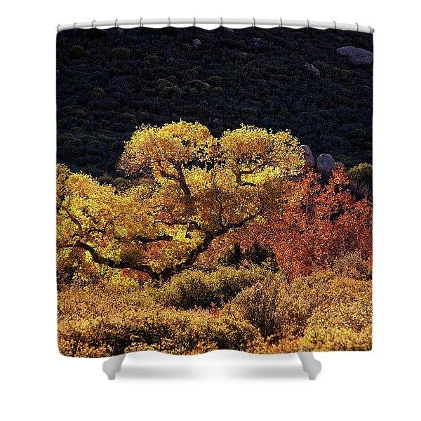 November In Arizona Shower Curtain