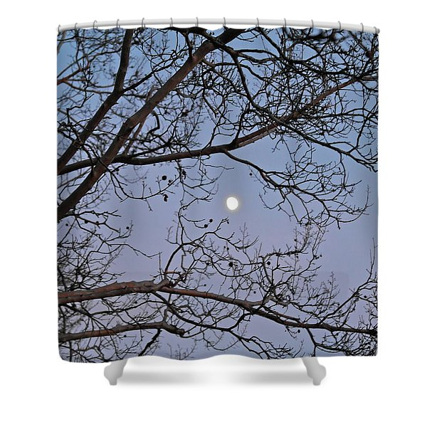 November Moon Shower Curtain