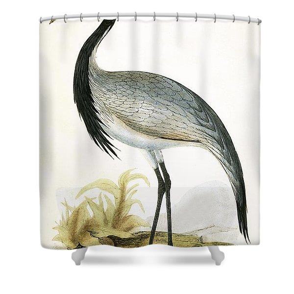 Numidian Crane Shower Curtain