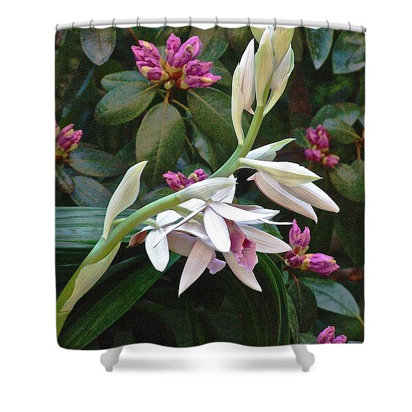 Nun Orchid Shower Curtain