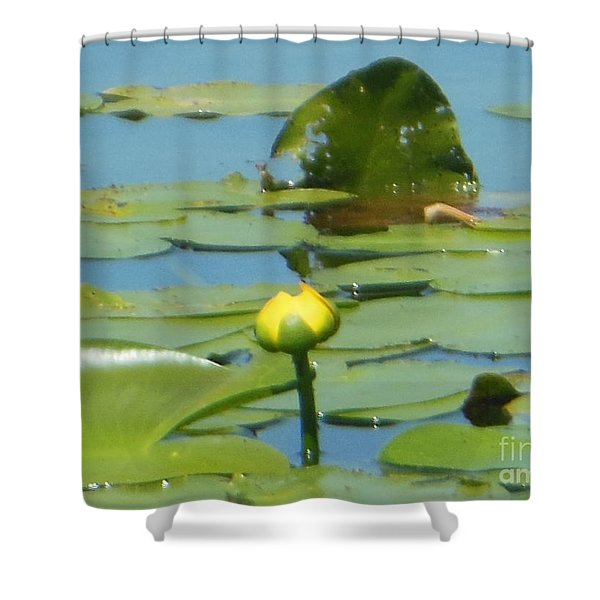 Nuphar Lutea Yellow Pond Shower Curtain