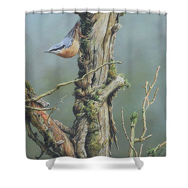 Shower Curtain featuring the painting Nuthatch by Alan M Hunt