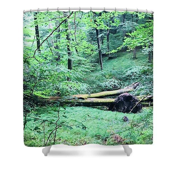 OA Shower Curtain