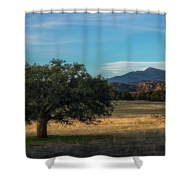 Oak And Cuyamaca Shower Curtain