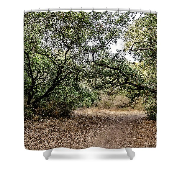 Shower Curtain featuring the photograph Oak Forest Trail by Arik Baltinester