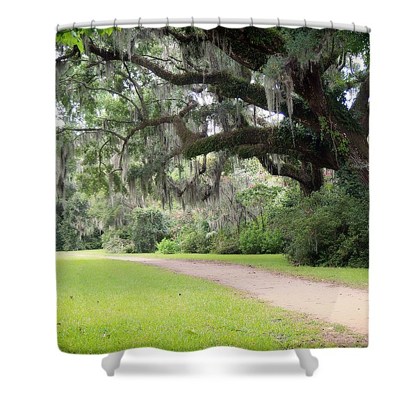 Oak Over The Trail Shower Curtain