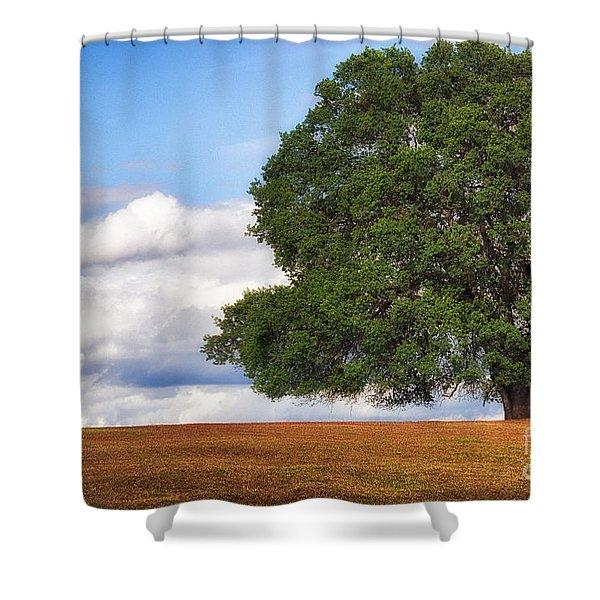 Oaktree Shower Curtain