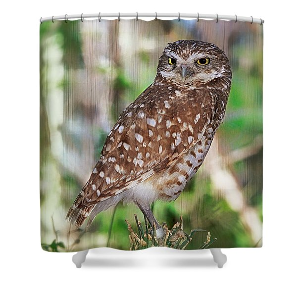 Observer Shower Curtain