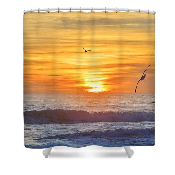 Coquina Beach Shower Curtain