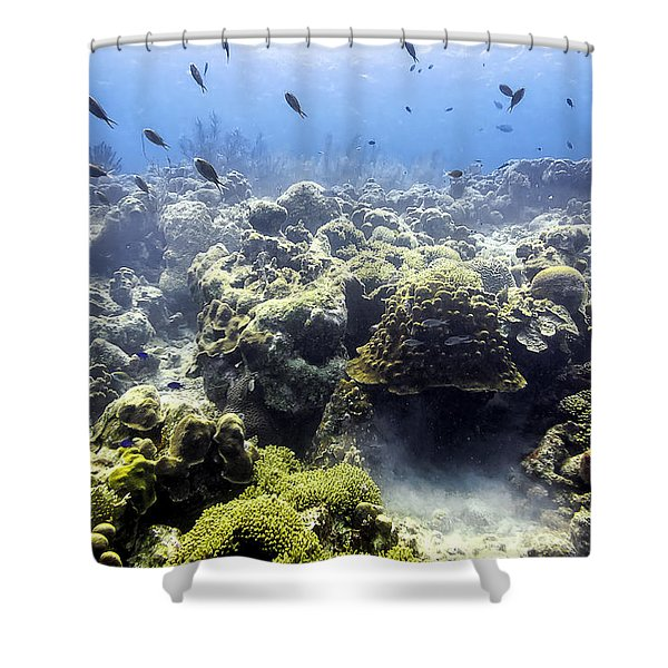 Ocean Light II Shower Curtain
