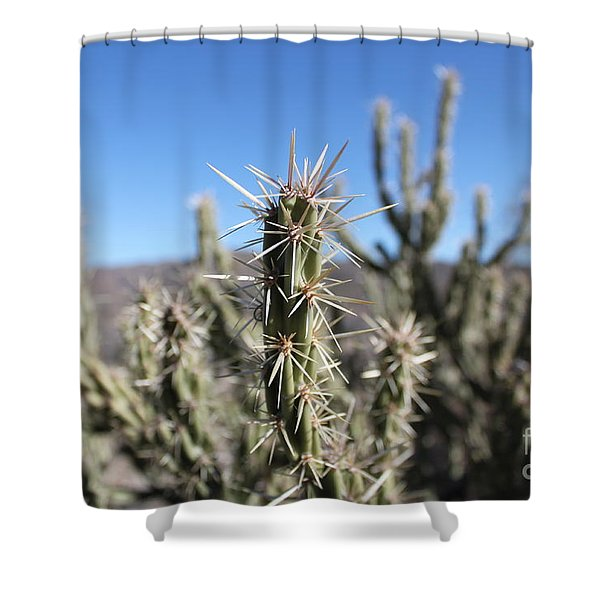 Shower Curtain featuring the photograph Ocotillo by Antonio Romero