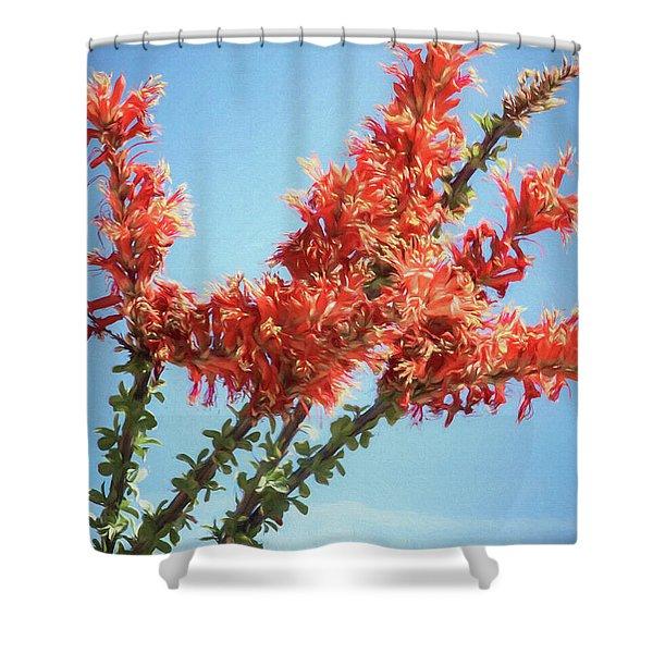 Ocotillo In Bloom Shower Curtain