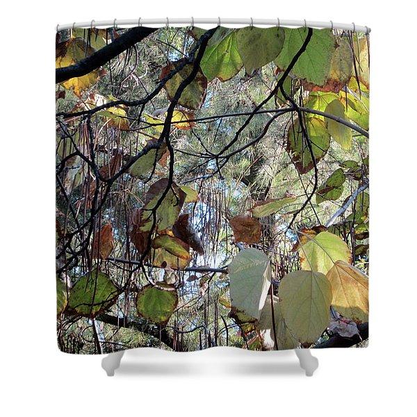 October Splendor Madrid 2 Shower Curtain
