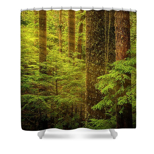 Of Elves And Faeries Shower Curtain