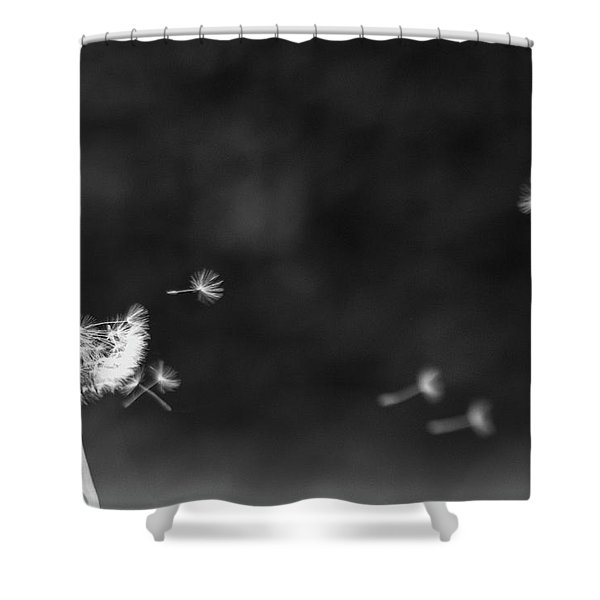 Off To Pastures New Shower Curtain