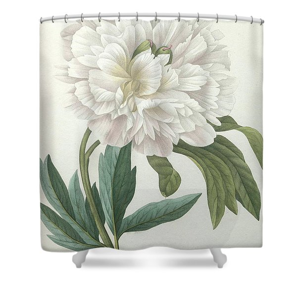 Official Peony Shower Curtain
