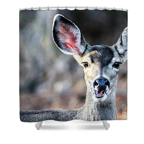 Oh, Deer Shower Curtain