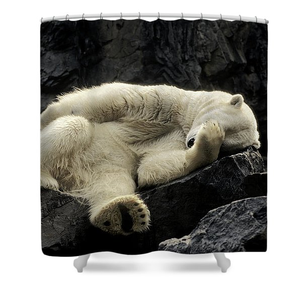 Oh What A Night Polar Bear Shower Curtain