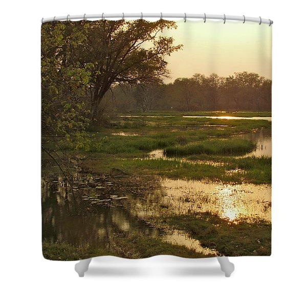 Okavango Delta Gold Shower Curtain