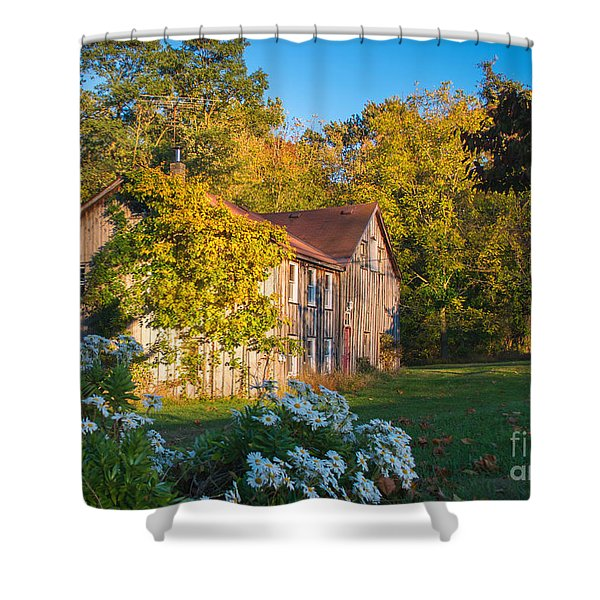 Old Beauty Shower Curtain